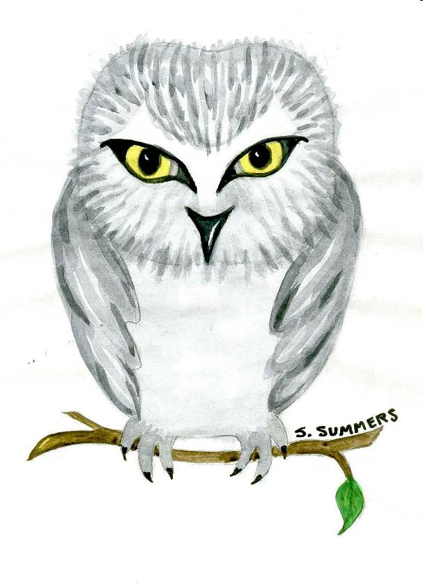 'Owl', a watercolor by S. Summers, at Creations Accessible Art Gallery, the Mental Health Association of Northwestern PA